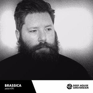 Brassica - DHA Mix #290