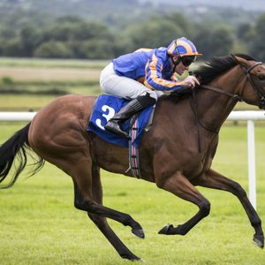Andy Holding - Curragh Preview: 2nd July