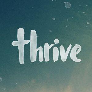 A Thriving Church Pt 1 - Thrive Vision Sunday