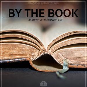Stability in an Unstable World (Psalm 119:113–120) - By the Book