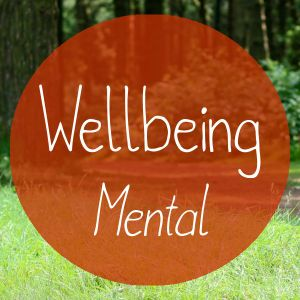Wellbeing: Mental - Mike Blaber