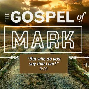 Mark 1:40-2:12