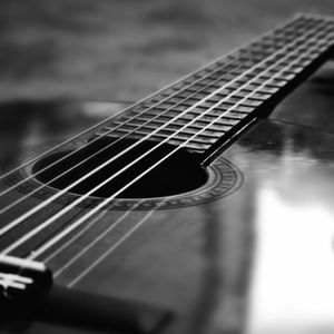 Two Stringed Instrument