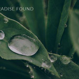 Paradise Found (Audio)