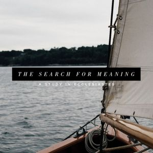The Search for Meaning - Week 8
