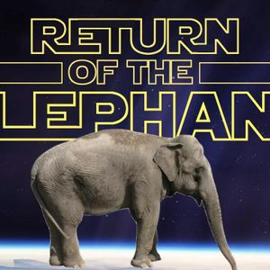 Return of the Elephant - Digital World - Audio