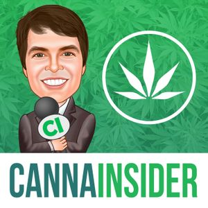 Ep 187 - A State by State Update on Cannabis Legalization with Kris Krane