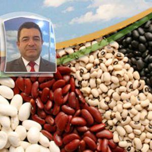 Compradores de feijão utilizam estoques e evitam novos negócios. Preços seguem sem força para altas