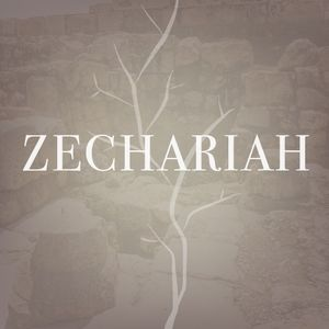 05-21-17 Salvation, mounted on a donkey, Zechariah 9:1-17, Pastor Chris Wachter