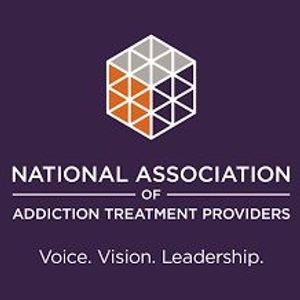 2017 NAATP Leadership Conference  - Facing Addiction In America - Kimberly Johnson, PhD