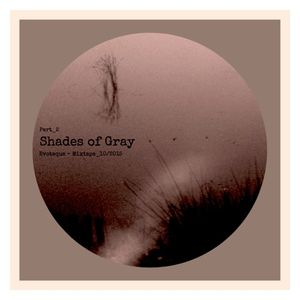 Shades Of Gray-Part2_Mixtape by Evoteque_10-2015