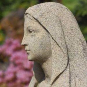 La Mariologie 13 - 2017-06-26 Le dogme de l'Immaculée Conception