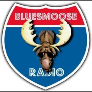 Bluesmoose 1302-52-2017 - some festive blues