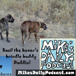 MIKEs-DAILY-PODCAST-1316-Posit