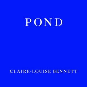 Ark Audio Book Club #19 Pond, by Claire-Louise Bennett