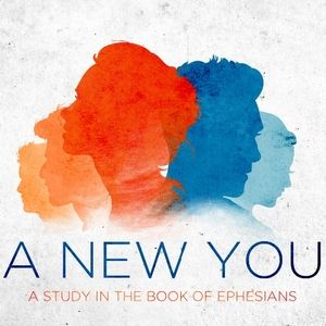 A New You: Part One