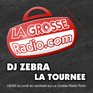 LA TOURNEE DE DJ ZEBRA - Dimanche 9 Avril 2017
