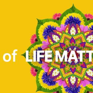 Best of Life Matters: falling in love, insomnia house, yoga nanna, elder farmer walks Kokoda