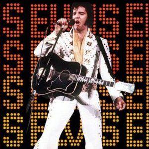 Episode 230: Elvis Birthday Party!!!