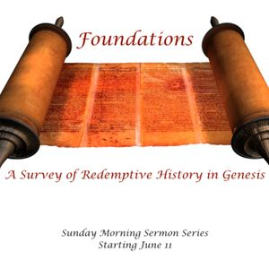 Foundations: A Survey of Redemptive History in Genesis. Gen 6-9