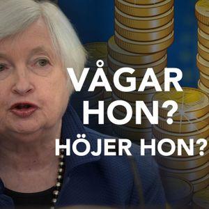 Yellens strategi och Mays haveri