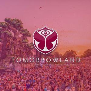 Dj Licious - live @ Tomorrowland 2017 (Belgium) – 29.07.2017