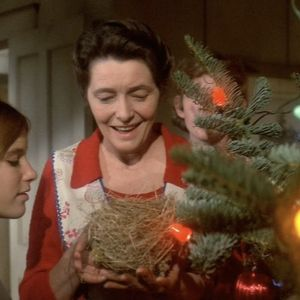 The Homecoming: A Christmas Story (The Waltons Christmas Special)