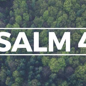 Psalm 42: Part 1