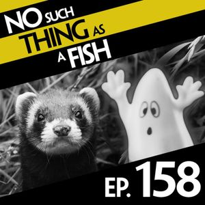Episode 158: No Such Thing As A Weasel's Fridge