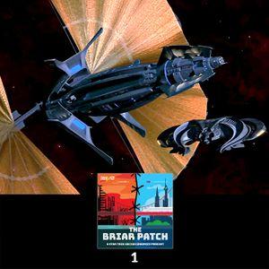 The Briar Patch : 1: Keynes in the Original Klingon