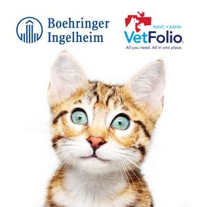 The Involved Pet Owner- The Key to Compliance in Long-Term CHF Therapy