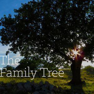 Family Tree Pt.6 - Audio