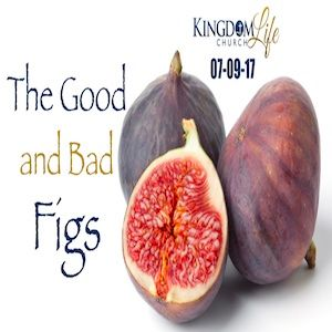 The Good And Bad Figs