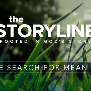 The Storyline   The Search for Meaning (Audio)