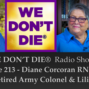 213  Diane Corcoran and Lilia on Understanding Veterans' NDEs, iands.org & Saint Germain Foundation