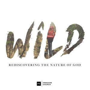 Wild, Week 3: A Wild Journey
