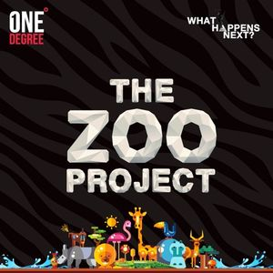 The Zoo Project Sydney - Closing Set