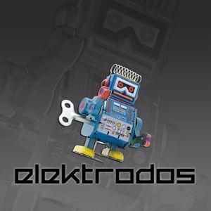ELEKTRODOS. New songs and DJ Set from Electroram