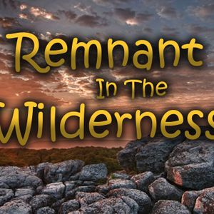 The New Covenant, Who's It Really For?: Remnant in The Wilderness #8