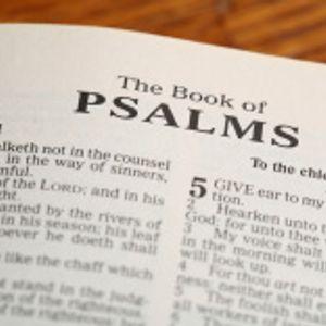 31st December 2017 (Evening) – Rev. John Williams – Psalm 23