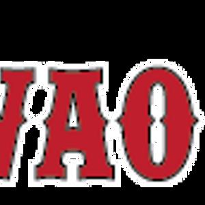 Makawao Parade and Rodeo