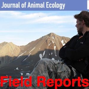 Journal of Animal Ecology: Field Reports, episode 4 Ben Dantzer