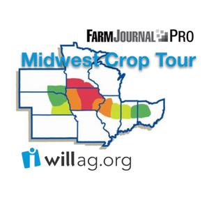 Aug 24 | #FJTour17 | Farm Journal Midwest Crop Tour @bluereeftrader @ChipFlory @chief321