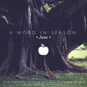A Word In Season - 2 The Right Gospel - Tony Cameneti