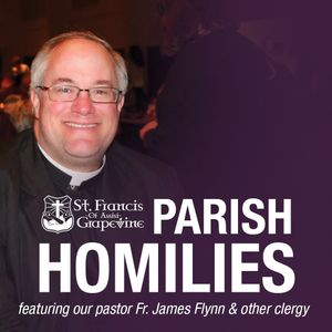 Father Flynn's Homily - 7/9/17