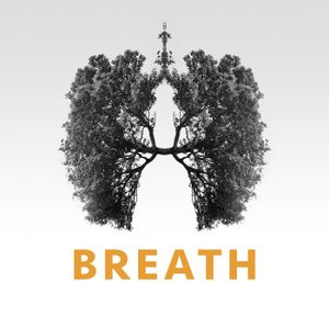 Breath - Week 3