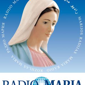 April 27 2017 Marian Art of Holly Schapker  Presenter: Fr. Johann Roten, S.M.