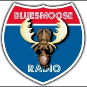 Bluesmoose 1250-26-2017 Back Water Roll Live in Bluesmoose café
