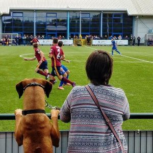 JD WPL Podcast 2017/18 Ep 5: Woof!