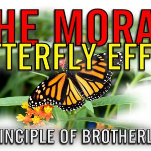 The Moral Butterfly Effect